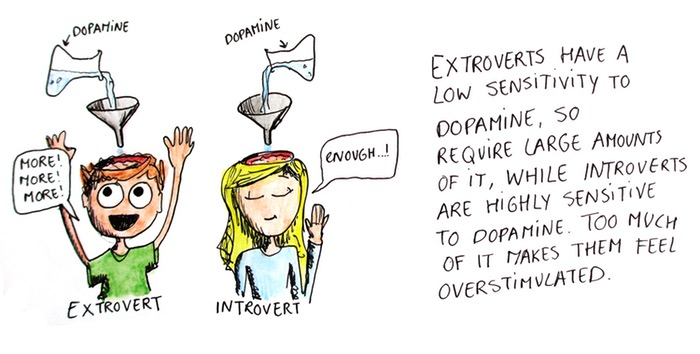 How Extroverts and Introverts respond to dopamine